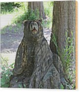 Bear In A Tree Wood Print