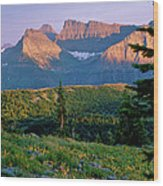 Bear Valley Glacier National Park Wood Print
