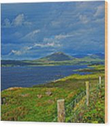 Beara Peninsula West Kerry - On The Road To Lauragh Again Wood Print