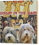 Bearded Collie Art Canvas Print - Singin In The Rain Movie Poster Wood Print