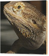 Bearded Dragon Profile Wood Print