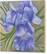 Bearded Iris Blue Iris Floral  Wood Print