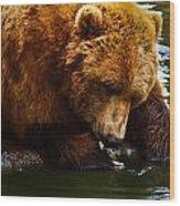 Bearly Wet Wood Print