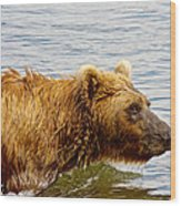 Bear's Eye View Of Swimming Grizzly In Moraine River In Katmai Wood Print