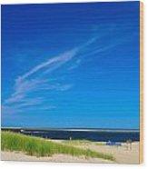Beatiful Chatham Beach Wood Print