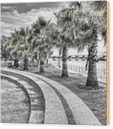 Beaufort Sc Water Front Park Wood Print