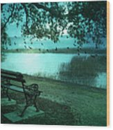 Beaufort South Carolina Surreal Ocean Inland Scene Wood Print by Kathy Fornal