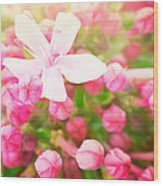 Beautiful Abstract Floral Background Wood Print