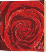 Beautiful Abstract Red Rose Illustration Wood Print