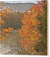 Beautiful Autumn Gold Art Prints Wood Print