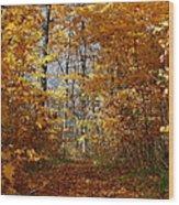 Beautiful Autumn Sanctuary Wood Print