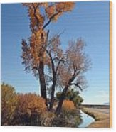 Beautiful Bishop Canal Wood Print