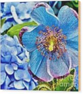 Beautiful Blue Orchid Wood Print