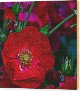 Beautiful Bouquet Wood Print