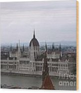 Beautiful Budapest Wood Print