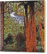 Beautiful Bush Wood Print