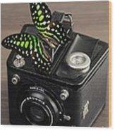 Beautiful Butterfly On A Kodak Brownie Camera Wood Print