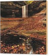 Beautiful Canyon And Waterfall Wood Print