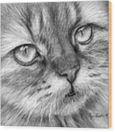 Beautiful Cat Wood Print by Olga Shvartsur