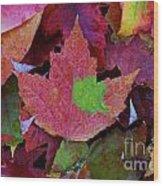 Beautiful Colors Of Fall Wood Print
