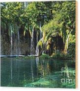 Beautiful Crotia Wood Print