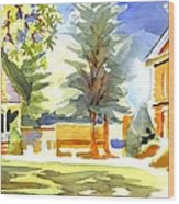 Beautiful Day On The Courthouse Square Wood Print