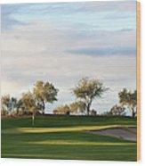 Beautiful Desert Golf Course Wood Print