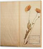 Beautiful Dried Vintage Flowers Wood Print