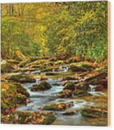 Beautiful Fall View In Tennessee Wood Print