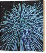 Beautiful Fireworks 13 Wood Print