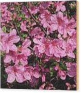 Beautiful Flowers Wood Print
