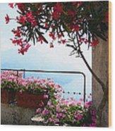 Beautiful Flowers Of Ravello Italy Wood Print
