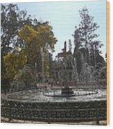 Beautiful Fountain In Lal Bagh Wood Print