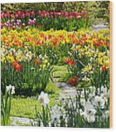 Beautiful Garden Wood Print