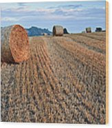 Beautiful Golden Hour Hay Bales Sunset Landscape Wood Print