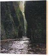 Beautiful Gorge Wood Print