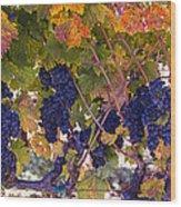 Beautiful Grape Harvest Wood Print