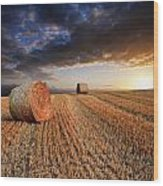 Beautiful Hay Bales Sunset Landscape Digital Painting Wood Print