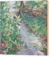 Beautiful Hike Wood Print