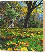 Beautiful Landscape Wood Print