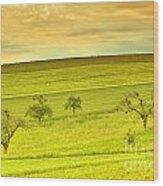 Beautiful Landscape In The Spring Wood Print by Regina Koch