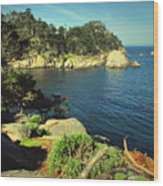 Beautiful Monterey Bay From Point Lobos Wood Print