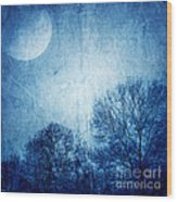 Beautiful Moonlight Photos Wood Print by Boon Mee