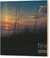 Beautiful Morning Wood Print by Brenda Schwartz