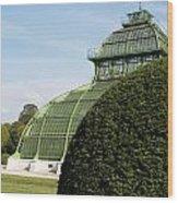 Beautiful Old Greenhouse Wood Print