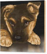 Beautiful Puppy Wood Print