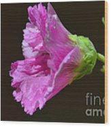 Beautiful Purple Flower Wood Print