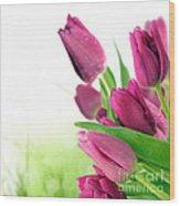 Beautiful Purple Tulips  Flower Wood Print
