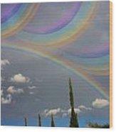 Beautiful Rainbows Wood Print