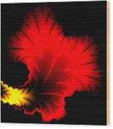 Beautiful Red And Yellow Floral Fractal Artwork Square Format Wood Print